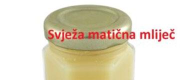 Utjecaj matične mliječi na živčani sustav