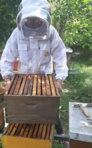 Košnica ventilirajuća prozračna pčelarska odjeća. Pčelarska jakna. Pčelarsko odijelo
