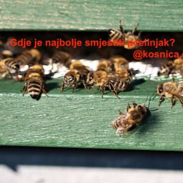 Gdje je najbolje smjestiti pčelinjak?